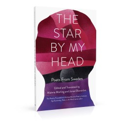 Book cover design for The Star by My Head