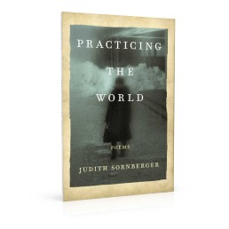 Book cover design for Practicing the World